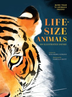 Life-Size Animals An Illustrated Safari