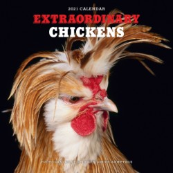 Extraordinary Chickens 2021 Wall Calendar