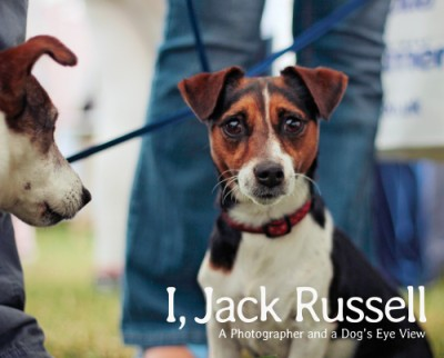 I, Jack Russell A Photographer and a Dog's Eye View